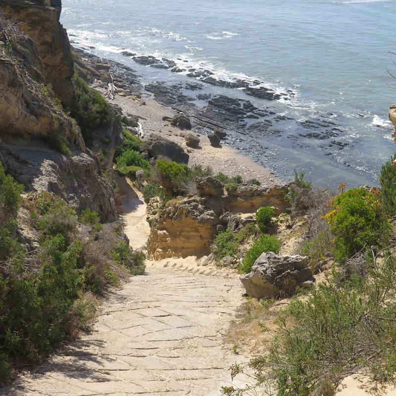 koensrust-beach-shack-path-down-to-beach